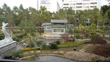 第二十屆廣州園林博覽會增城園(紅荔園)工程